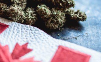 خرید قانونی ماریجوانا
